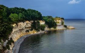 Картинка море, деревья, камни, скалы, побережье, Дания, горизонт