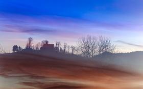 Обои поле, туман, утро, храм