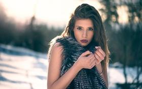Картинка Clara, Martin Kühn, зима, холод