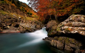 Картинка осень, пейзаж, природа, река
