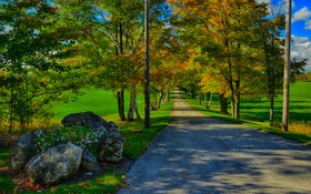 Картинка дорога, осень, трава, деревья, камни