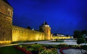 Обои деревья, цветы, ночь, огни, замок, стена, башня