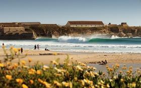 Обои волны, пляж, цветы, брызги, люди, кайт, кайтсерфер