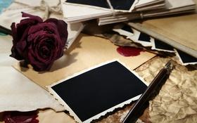Картинка цветы, кофе, розы, чашка