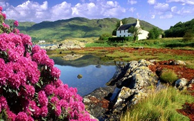 Картинка цветы, горы, берег, Шотландия, домик