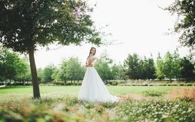 Картинка лето, платье, невеста, свадьба, annie richards