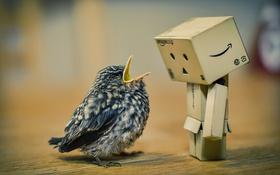 Обои милый, птичка, птенец, дамбо