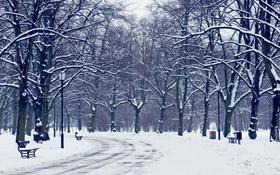 Обои город, снег, улица