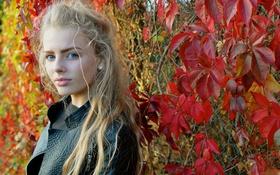 Обои девушка, взгляд, осень