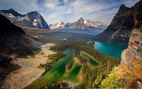 Обои лес, горы, скалы, озера