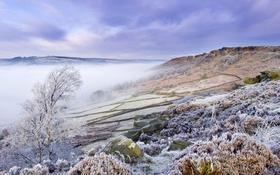 Обои Англия, иней, зима, склон, холмы, Дербишир, туман