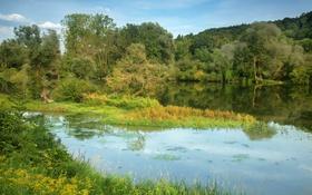 Картинка природа, река, фото, Германия, Бавария, Niederaichbach