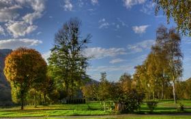 Картинка зелень, трава, деревья, горы, парк, дорожки, Германия