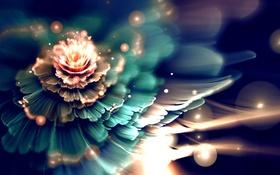 Обои цветок, абстракция, сияние, размытость, фрактал, боке