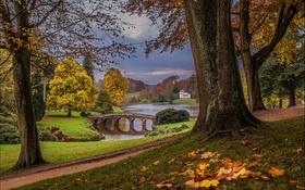Обои листья, облака, деревья, мост, озеро, парк, путь