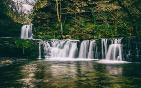 Обои деревья, скалы, вода, каскады, слизь