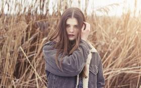 Картинка Girl, Nature, Beautiful, Sun, View, Hair, Portret