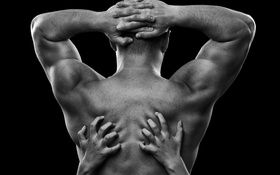 Обои arms, back, muscular back, woman hands, seduction