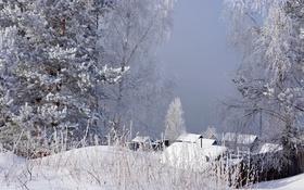 Обои зима, иней, трава, снег, деревья, туман, домики