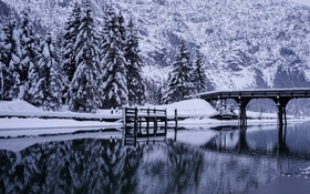Картинка зима, деревья, мост, река, ели