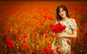 Картинка Girl, Red, Sky, Body, Flowers, View, Field