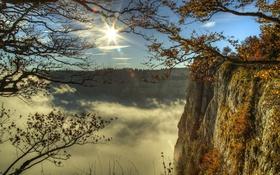 Картинка небо, солнце, облака, деревья, ветки, скалы