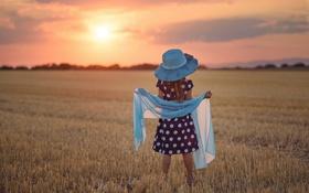 Обои поле, лето, девочка, шляпка