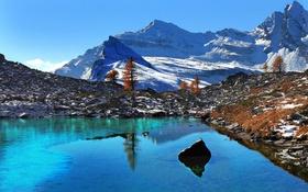 Картинка осень, снег, деревья, горы, озеро, Италия, Пьемонт