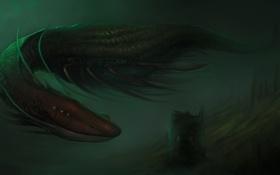 Картинка ночь, арт, змей