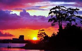 Обои закат, деревья, небо, солнце, тучи