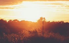 Обои лето, облака, деревья, закат, забор, кустарник, солнечный