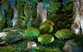 Обои ёлки, дизайн, парк, кусты, Kansas City, Powell Gardens, камни