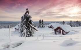Картинка дома, небо, снег, деревья, зима
