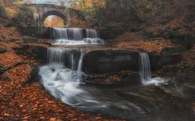 Обои листья, осень, каскад, мост, деревья