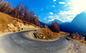 Обои asphalt, trees, closed curve, mountains