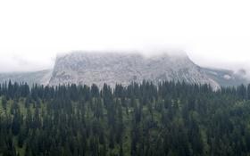 Обои облака, горы, Австрия, сосна, Бихльбах