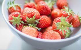 Обои макро, ягоды, клубника, красные