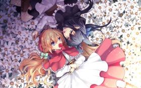 Картинка цветы, девушки, аниме, лепестки, арт, лежат, agekichi