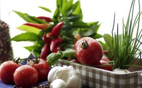 Обои зелень, еда, натюрморт, овощи, томаты, чеснок