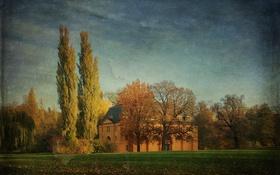 Обои листья, трава, деревья, небо, поле, сельская местность, дом