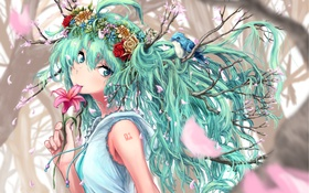Обои vocaloid, птица, девушка, аниме, ветви, арт, hatsune miku