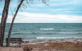 Картинка море, природа, скамья