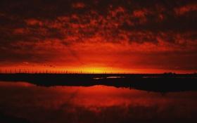 Обои небо, трава, облака, озеро, отражение, восход, огонь