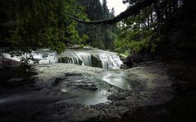 Картинка лес, деревья, ветки, река, обрыв, течение, водопад
