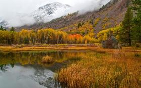 Картинка осень, снег, деревья, горы, озеро, Калифорния, США