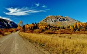 Картинка дорога, осень, трава, облака, деревья, горы, Канада