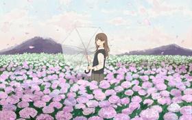 Картинка поле, девушка, гортензия, лепестки, зонт, арт, зонтик