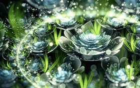 Картинка капли, цветы, абстракция, лепестки, бутон