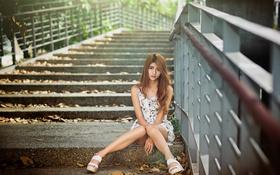 Картинка осень, девушка, мост, азиатка