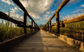 Обои landscape, mountain, path